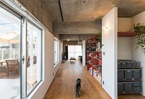 柿渋の床、漆喰、梁と柱。古きを愉しむ家。